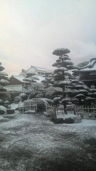 20101231鹿児島.jpg
